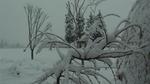 豪雪地帯!?_W480xH270.jpg